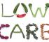 como funciona a dieta low carb