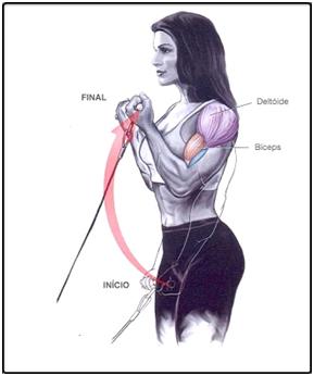 Treino Rosca com cabo para biceps