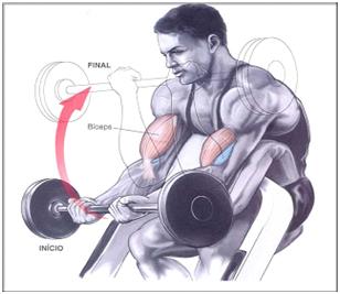 Treino Rosca Scott para biceps