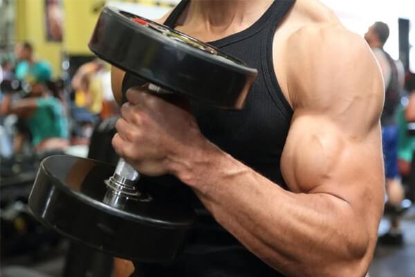 Ejercicios para definir musculos rapidamente