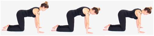 pilates exercício escapula