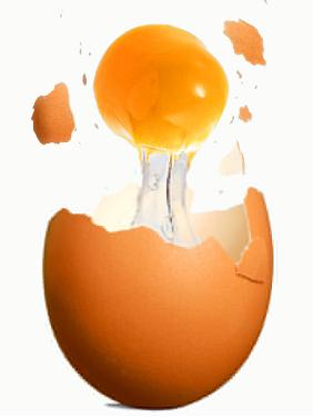 emagrecer com dieta do ovo