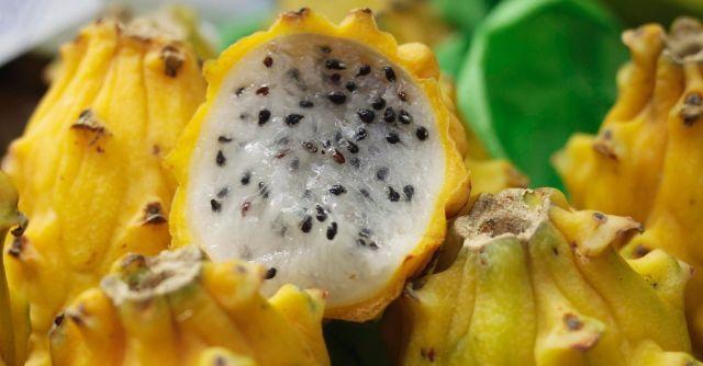 tipos de pitaya - fruta