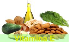 Fonte de Vitamina E