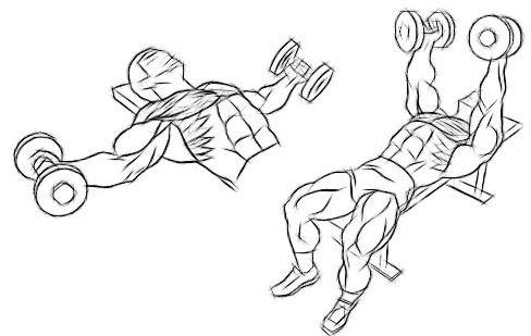 Como fazer o exercício crucifixo corretamente