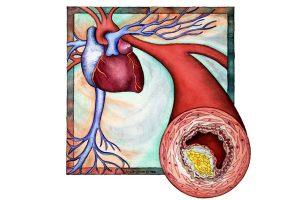 colesterol para que serve