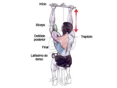 Como fortalecer os braços facilmente