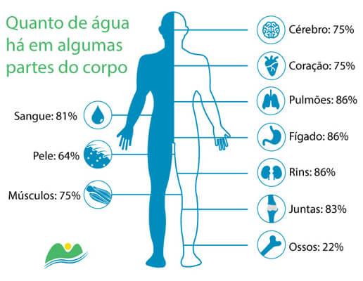 quantidade de agua no corpo