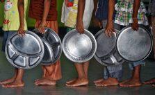 desnutrição causas