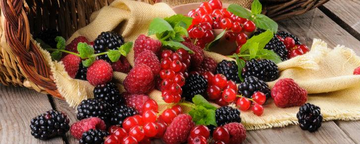 frutas vermelhas beneficios