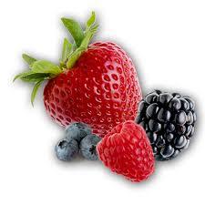 frutas vermelhas propriedades