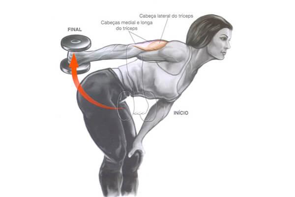 treino ABCDE para triceps
