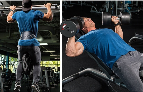 treino de costas como fazer