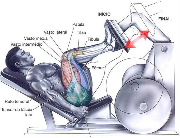 treino de pernas como fazer