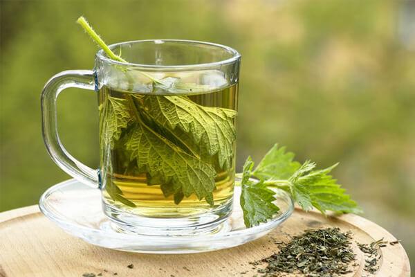 Benefícios do chá do boldo: cuidados, para que é bom e mais.