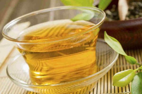 Chá de carqueja: benefícios, como tomar e mais.