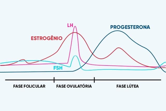 nivel hormonal da menstruacao