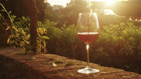 quanto de vinho tomar por dia