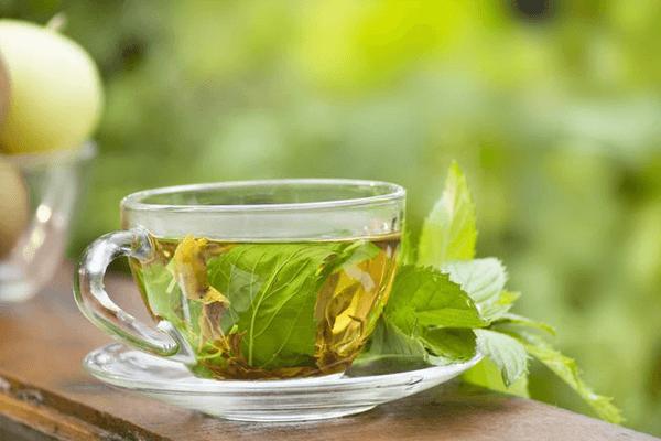 chá detox de coentro