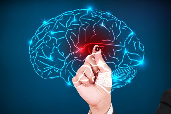 Epilepsia: O que é? Como tratar? Informações completas