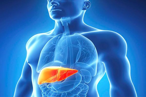Hepatites virais: O que são? Formas de Contágio, Como Prevenir e Tipos de Tratamento