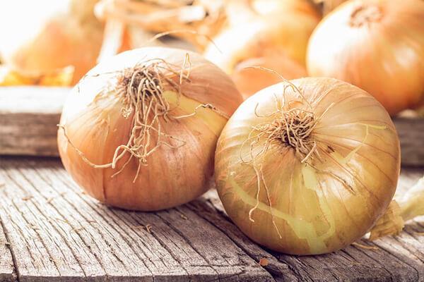 Quais os principais benefícios da cebola? Para que serve e propriedades.