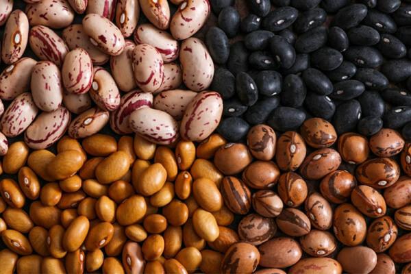 Quais são os principais benefícios do feijão? Veja aqui propriedades e para que serve.