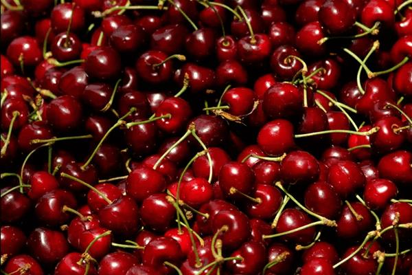 Os benefícios da cereja para a saúde