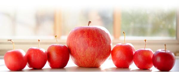 Propriedades da maçã: quais os benefícios e para que serve?