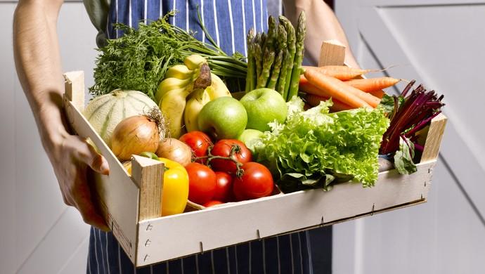 comidas orgânicas
