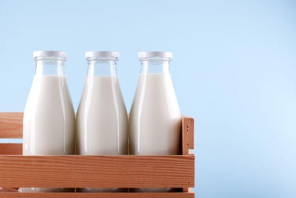 leite integral leite desnatado leite semidesnatado