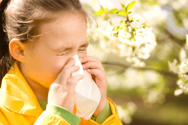 Rinite Alérgica: sintomas, cuidados, tratamento e mais