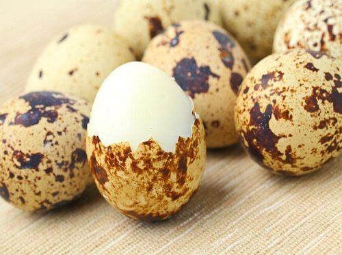 15 Benefícios Exclusivos dos Ovos de Codorna!