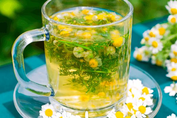 18 Benefícios do Chá de Camomila, como fazer e contraindicações!