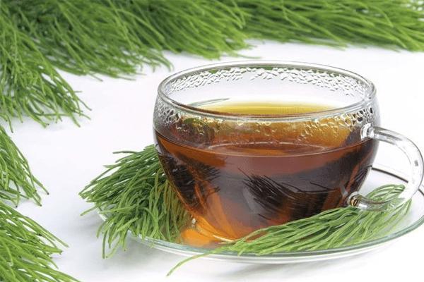 Chá de Cavalinha: Benefícios, Como Tomar e Mais