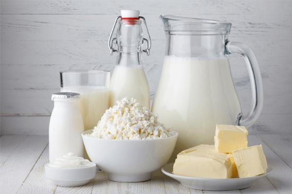 dieta do leite cardápio